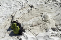 Some day cruisers left a charming sand sculpture for us
