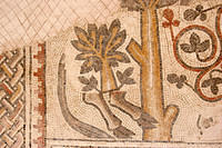 Old mosaic in Madaba.  For some reason, the restoration involved grafting a tree onto a donkey's legs.